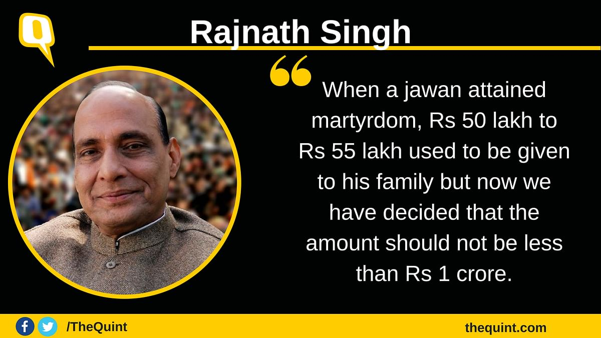 Hands of Jawans Not Tied During Ramzan 'Ceasefire', Says Rajnath