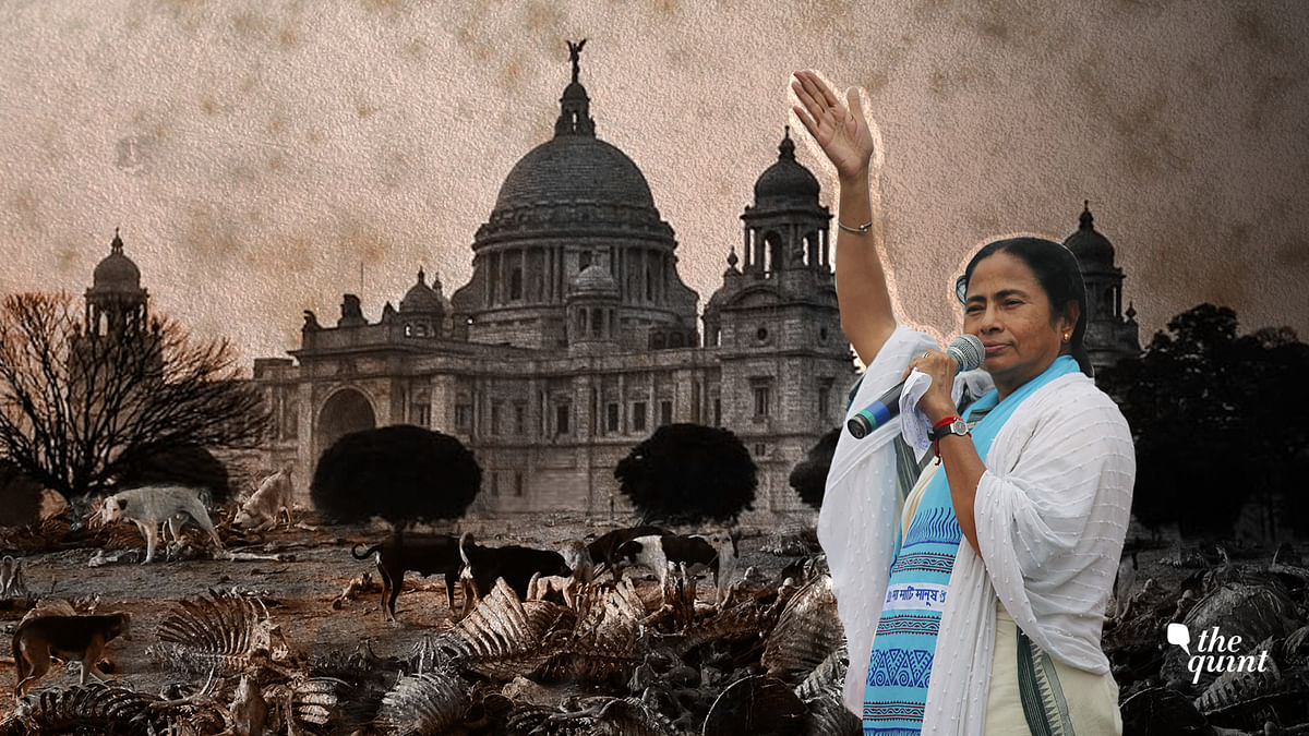 Mamata's 'Waste' Bengal Reeks of Rotting Meat, Decay & Turmoil