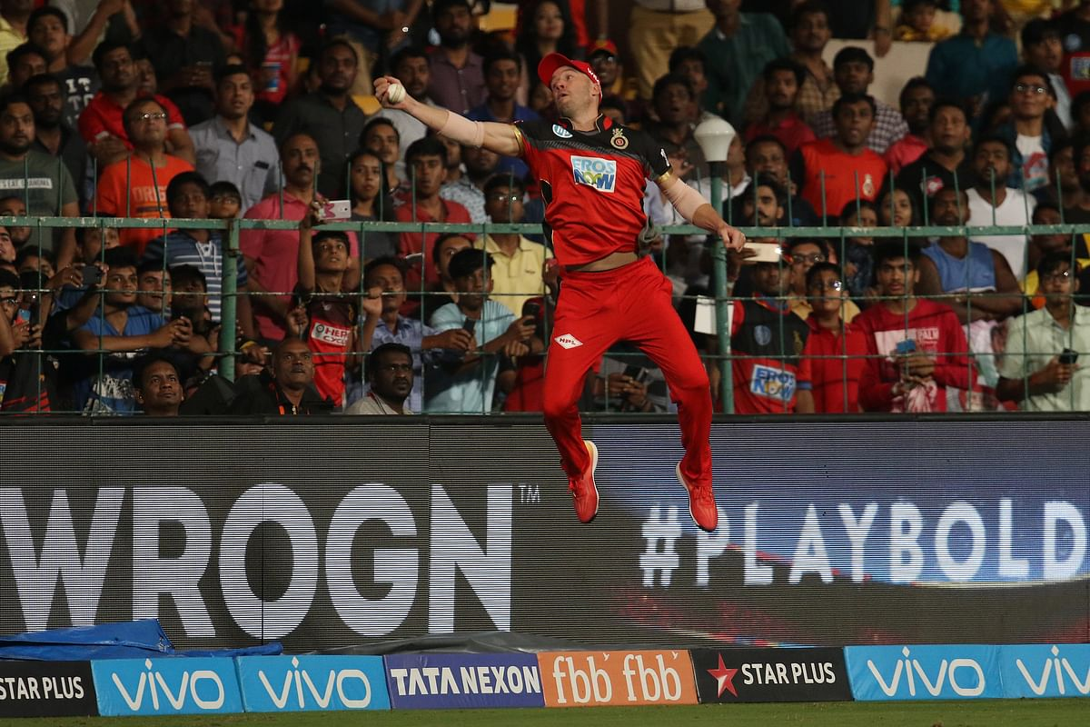 AB de Villiers takes a splendid catch against Sunrisers Hyderabad.