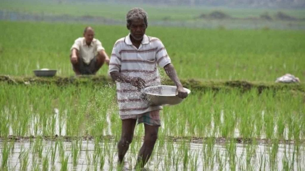 Climate Change to Affect Poor By Making Rice Less Nutritious