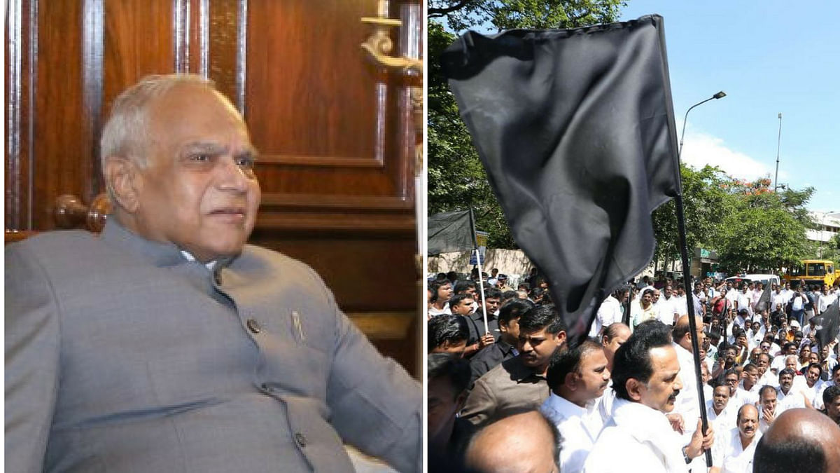 Opposition in Tamil Nadu holds black flags protest against Governor Banwarilal Purohit.