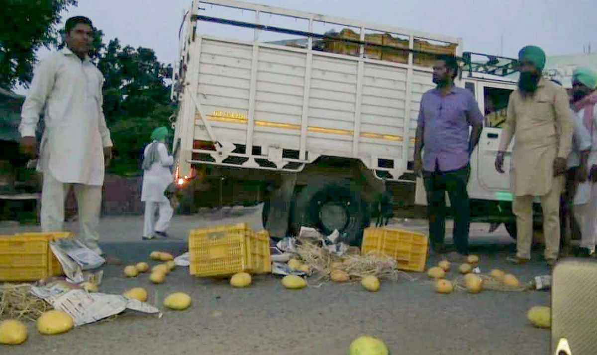 Famers dump all their produce on the streets