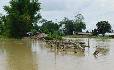Assam flood: Death toll is 23, situation better