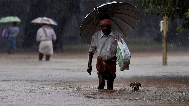 Heavy rains lash Kerala for over one and a half months. Image used for representational purposes.