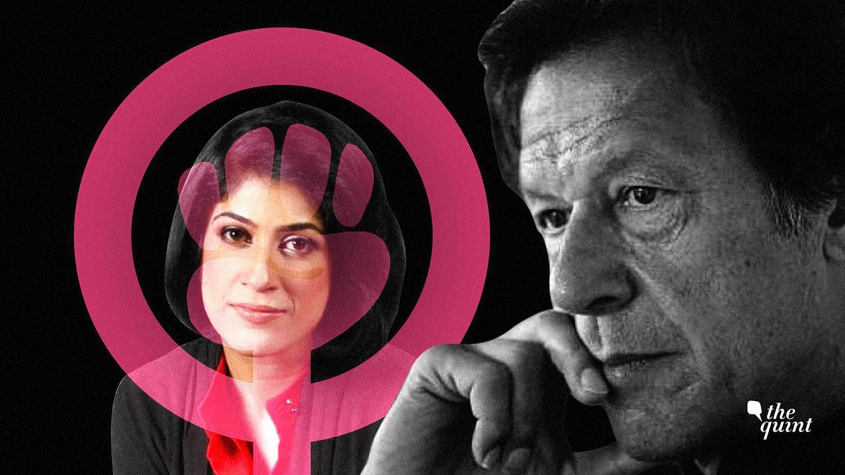 Imran Khan's View of Western Feminism Actually Degrades Fatherhood