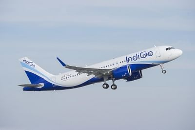 IndiGo flight. Representative image.
