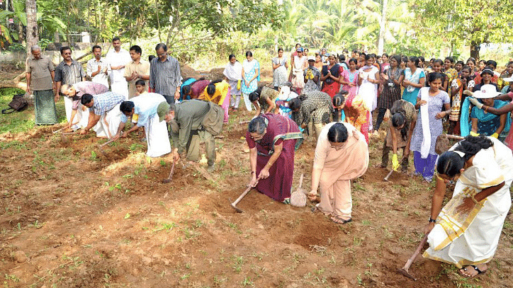 Community members prepare the ground to plant saplings.