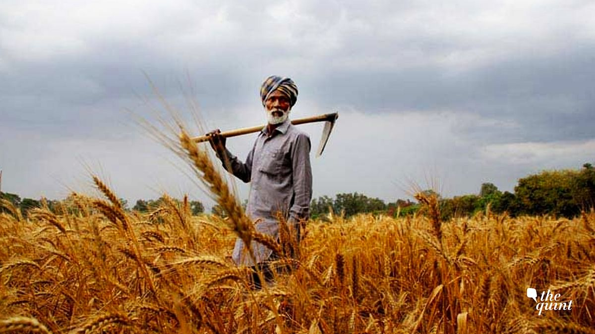 Centre Raises MSP for Crops Amid Row Over Passage of Farm Bills