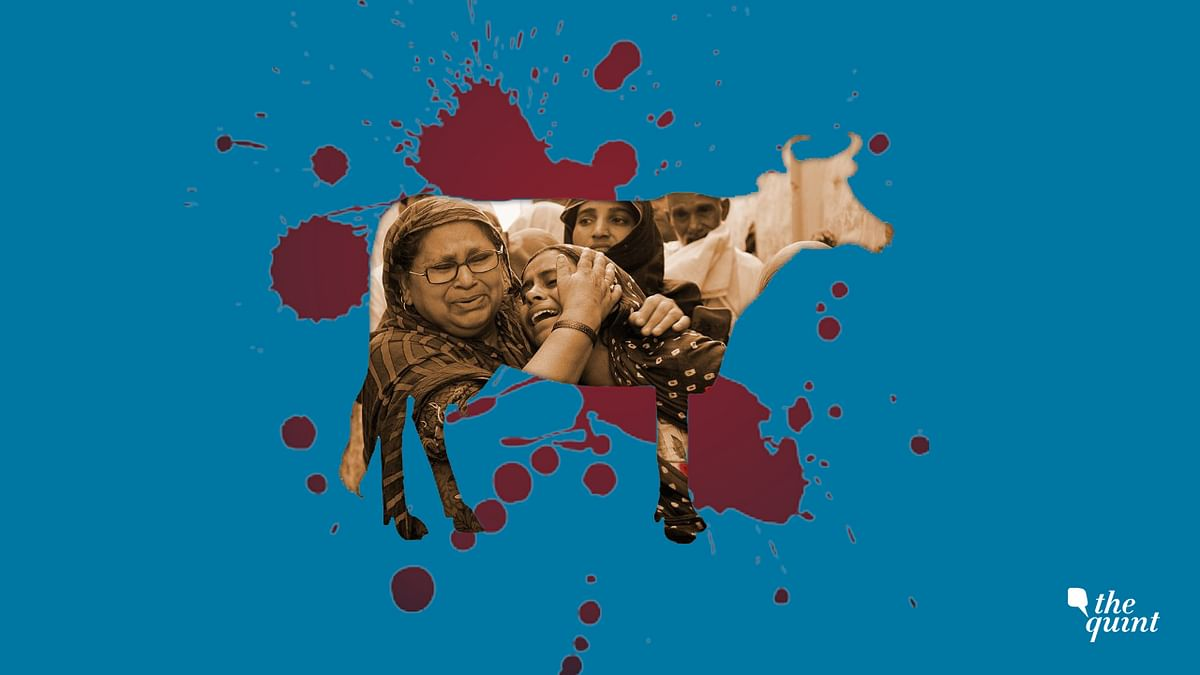 Image of family of Dadri mob lynching victim used for representational purposes.