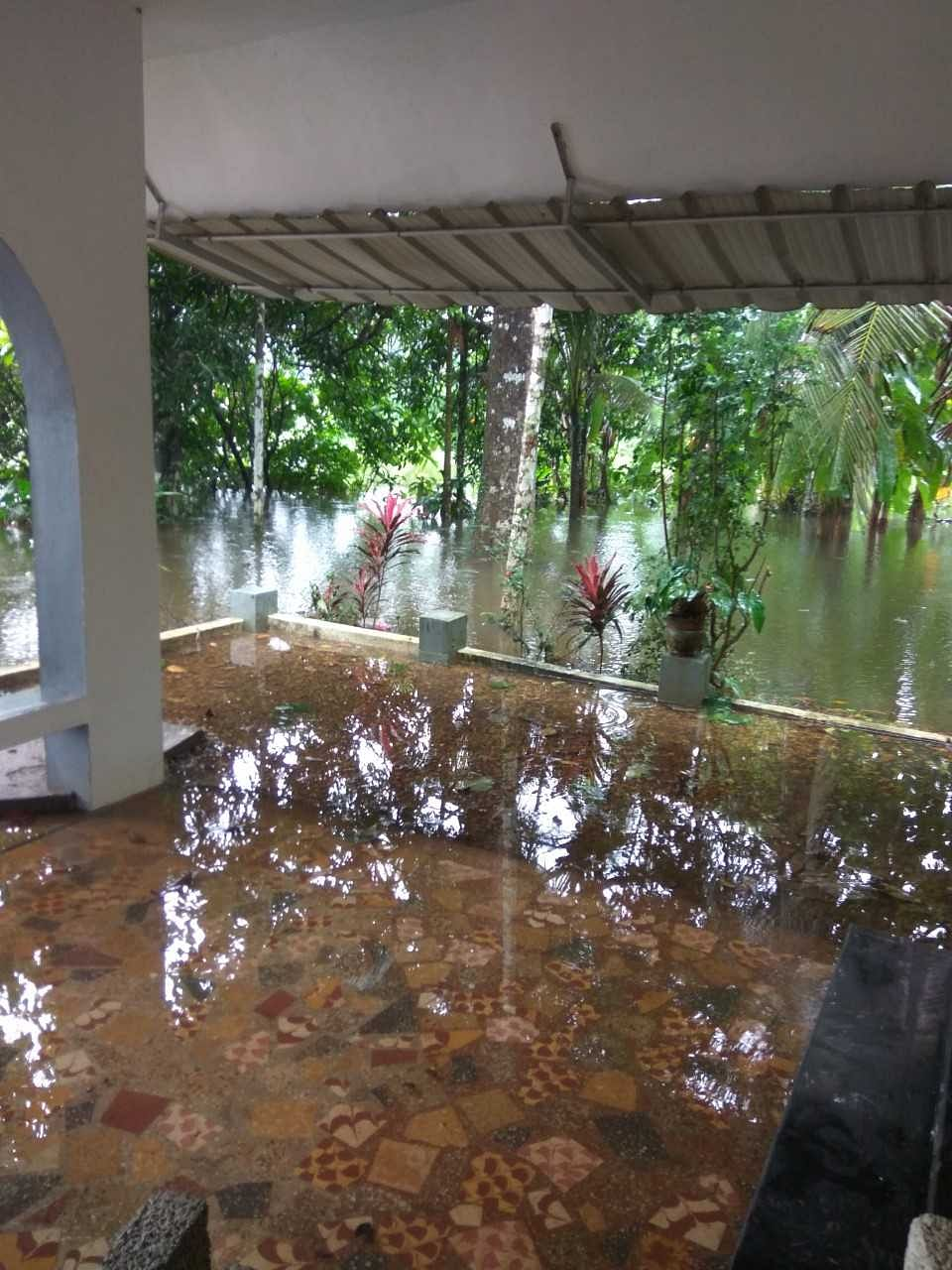 I woke up in the morning to see the porch turned into a private swimming pool.