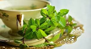 Mint tea to beat inflammation