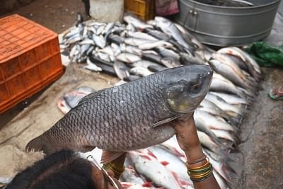 Prices of seafood have increased by at least 50 per cent in the city due to the annual fishing ban, according to fish traders.