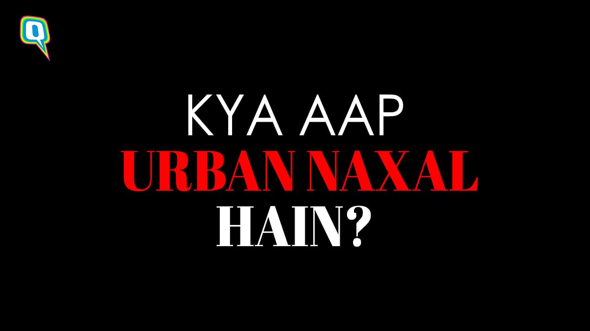 Are You a Certified 'Urban Naxal'? Take This Quiz to Find Out!