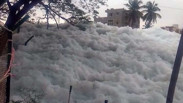 No, It's Not Switzerland! Bengaluru's Bellandur Lake Froths Again
