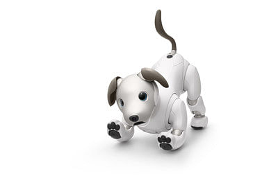 Aibo uses AI to develop its own personality.