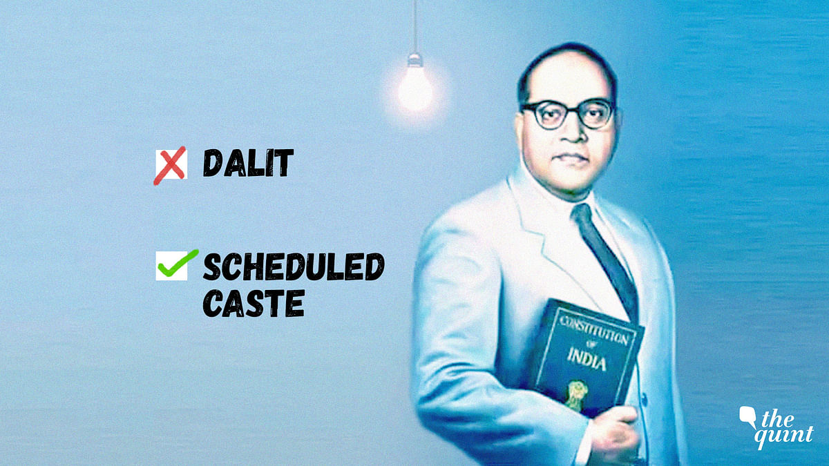 'The Word 'Dalit' is Insulting, Unconstitutional': Duo Behind PIL