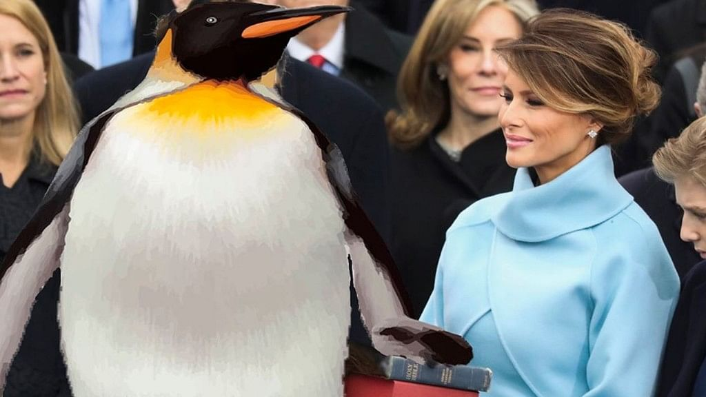 Donal Trump (replaced by a penguin) with the first lady, Melania Trump.