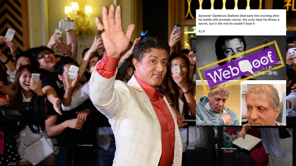 Sylvester Stallone Declared Dead AGAIN! But He's 'Still Punching'