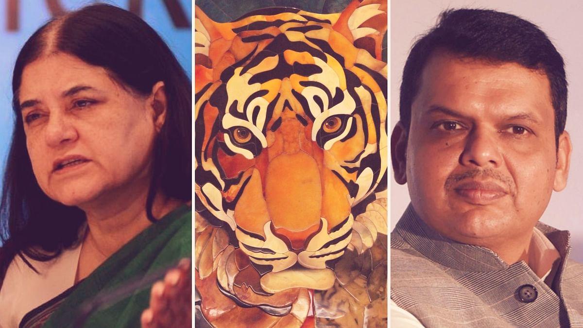 'Proper Guidelines Followed': Forest Minister on Avni's Killing