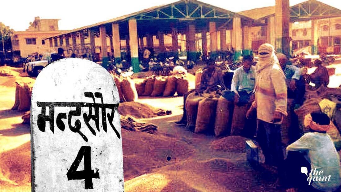 'Bhavantar Nahi, Bhav': Mandsaur Farmers' Plea for 'Right Prices'