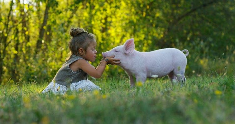 Early childhood experiences can shape how we feel about animals – and lead to veganism, as it did for Donald Watson.