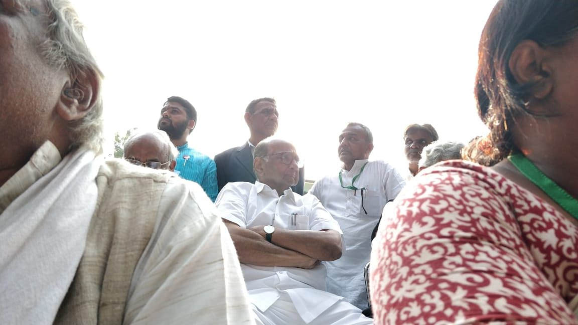 NCP President Sharad Pawar at the protests.