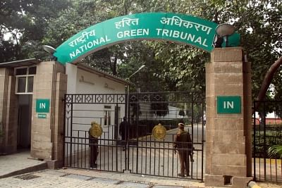 NGT allows construction of Noida hospital, but orders planting 1,500 trees for lost green cover