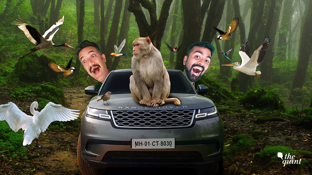 Weekend Getaway: We Escape Delhi Chasing Birds in a Luxury SUV