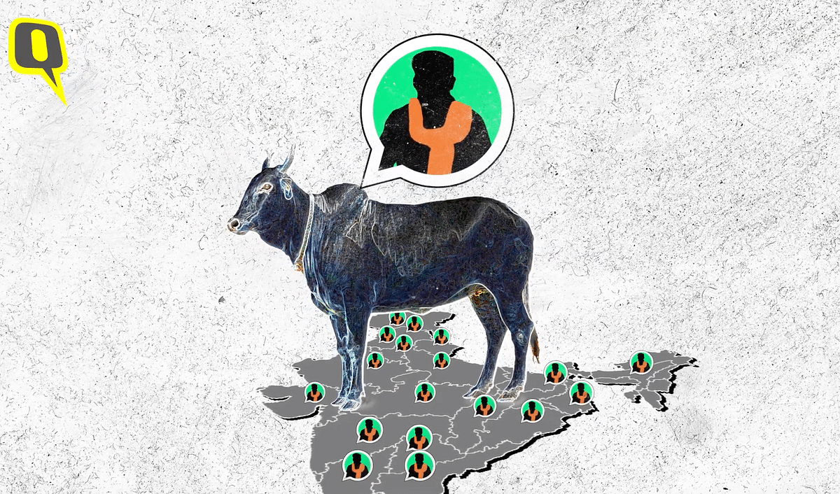 The Making of Lynchistan: Inside India's Deadly Gau Raksha Network