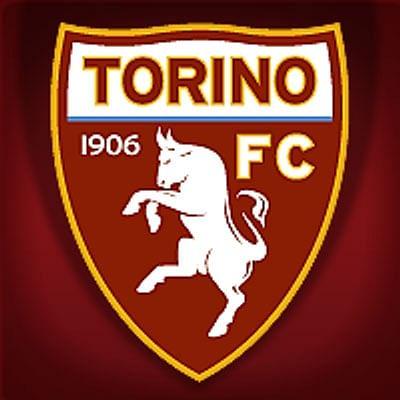 Torino. (Photo: Twitter/@TorinoFC_1906)