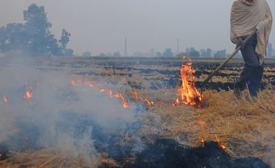 Authorities in Punjab are targeting a 90 percent reduction in stubble burning cases next year, a senior official said here on Monday. (Photo: IANS)