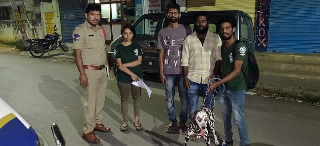Activists rescued the dog who was abandoned by his owners.