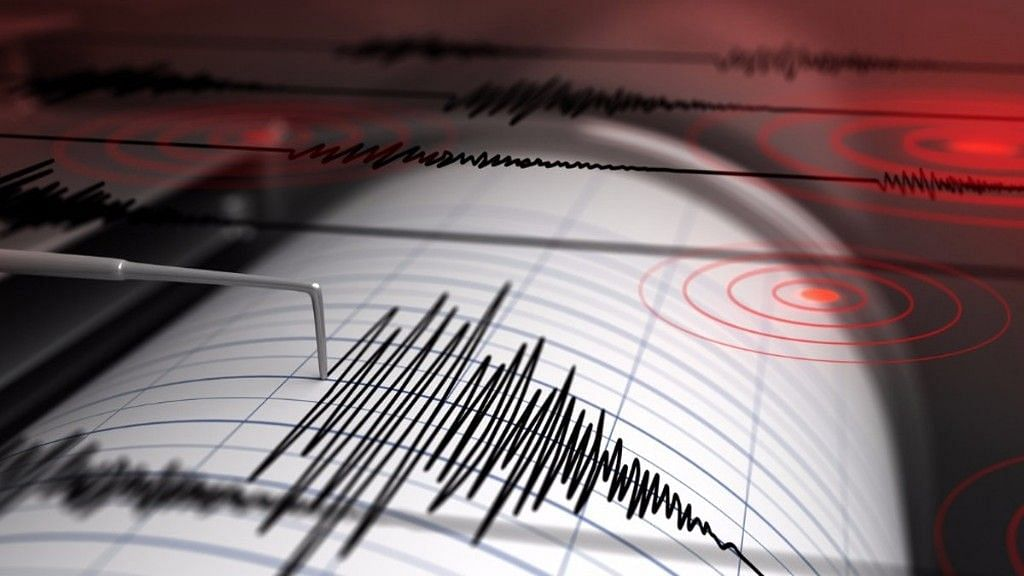 The Australian Bureau of Meteorology confirmed a tsunami, with a warning for Lord Howe Island.