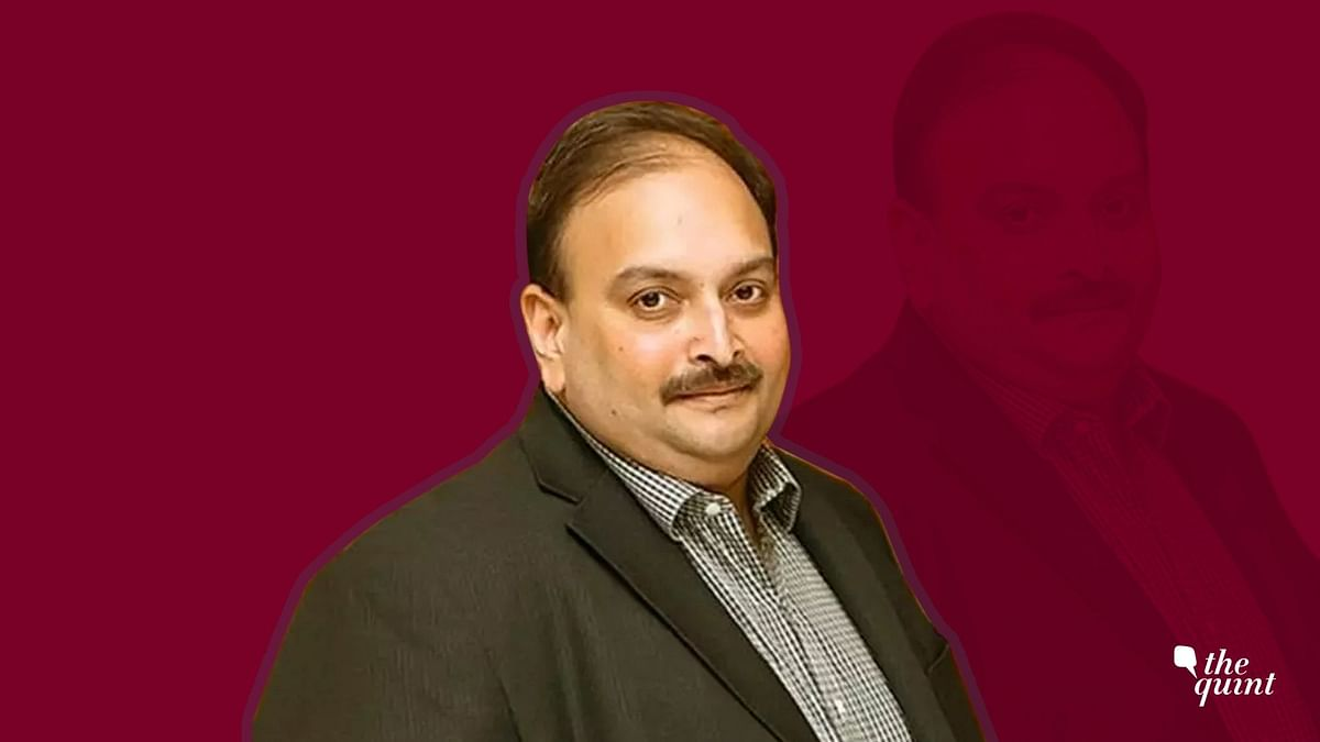 Managing Director of Gitanjali Gems Mehul Choksi.