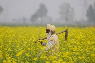 The Modi government has worked out a relief package for farmers including interest-free farm loans and premium-free crop insurance ahead of its interim Budget to be tabled on February 1, informed sources say. (Photo: IANS)