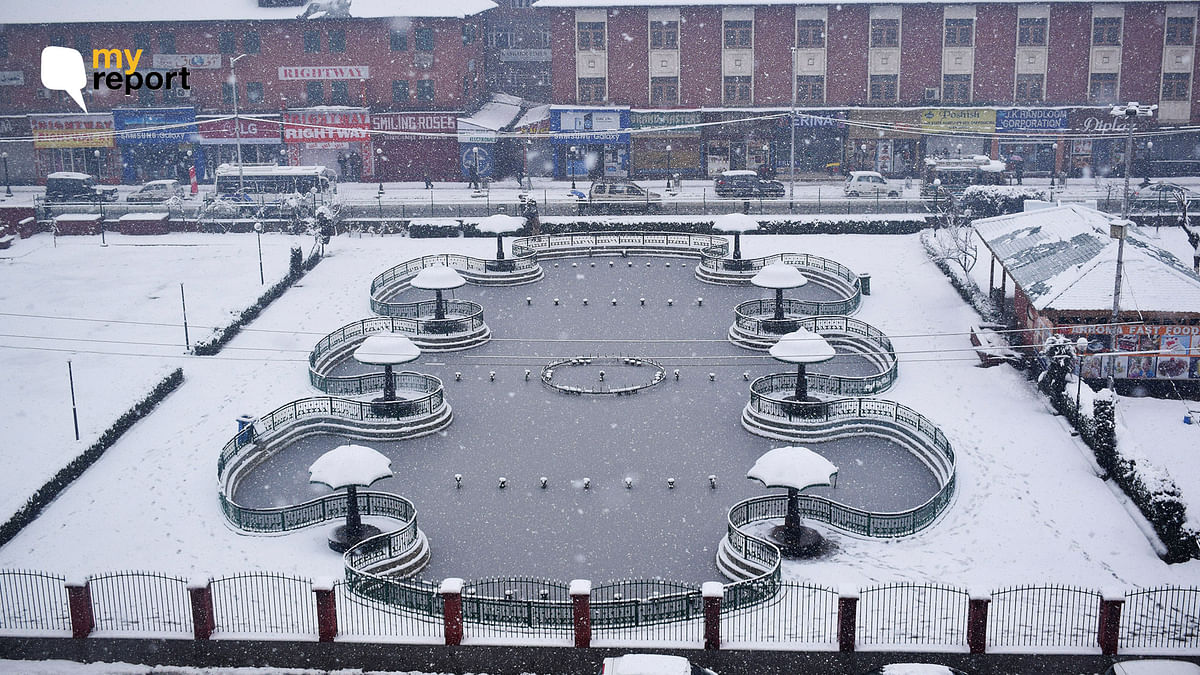 Another Snowy Morning in Kashmir Valley as Cold Wave Continues