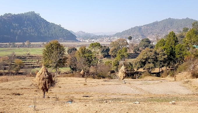 Spring-Fed Rivers in The Indian Himalayas Are Drying Up