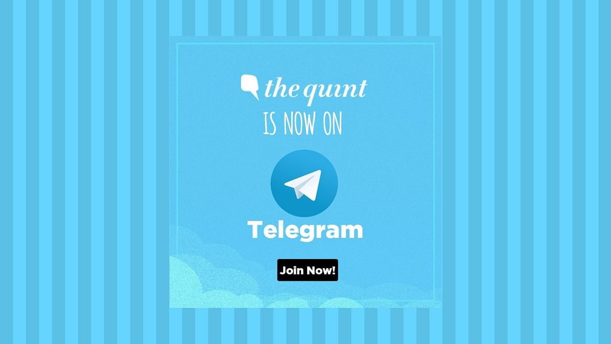 The Quint Is Now on Telegram!