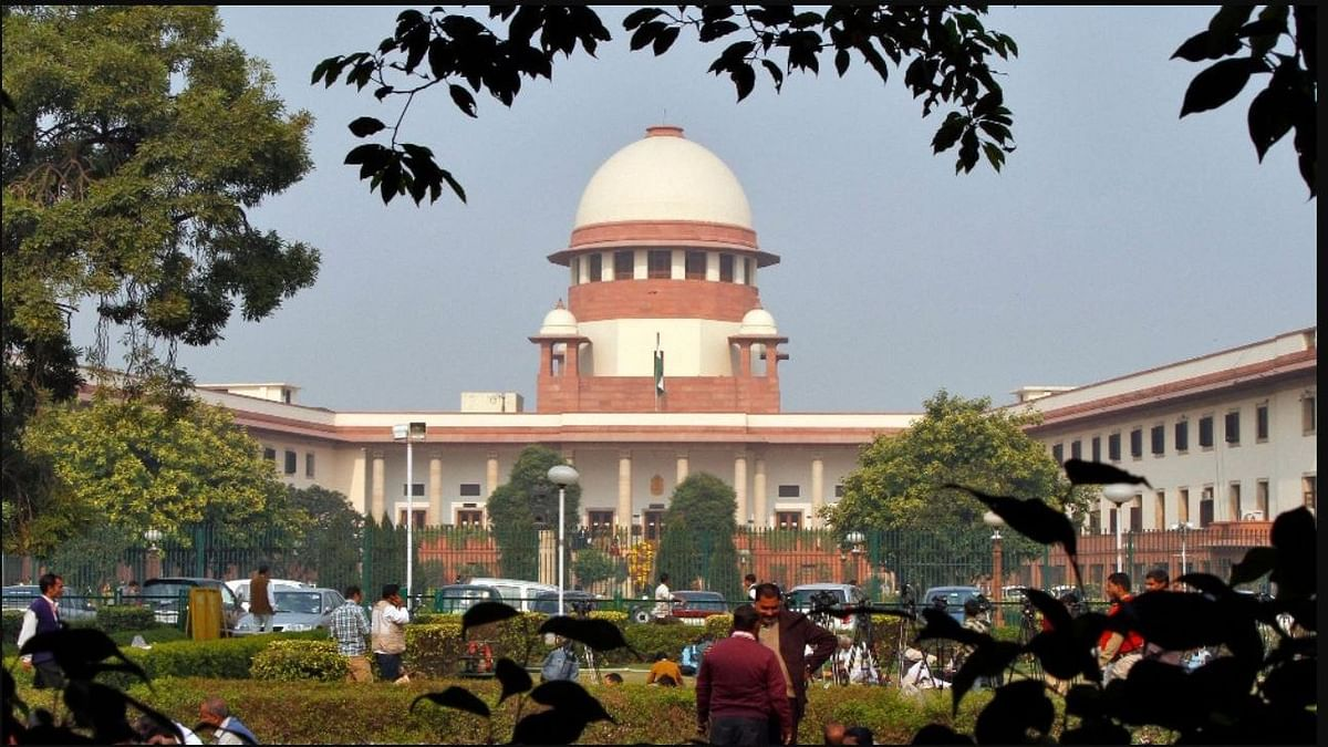 Amnesty Condemns SC Ruling on Evicting 10 Lakh Tribal Families