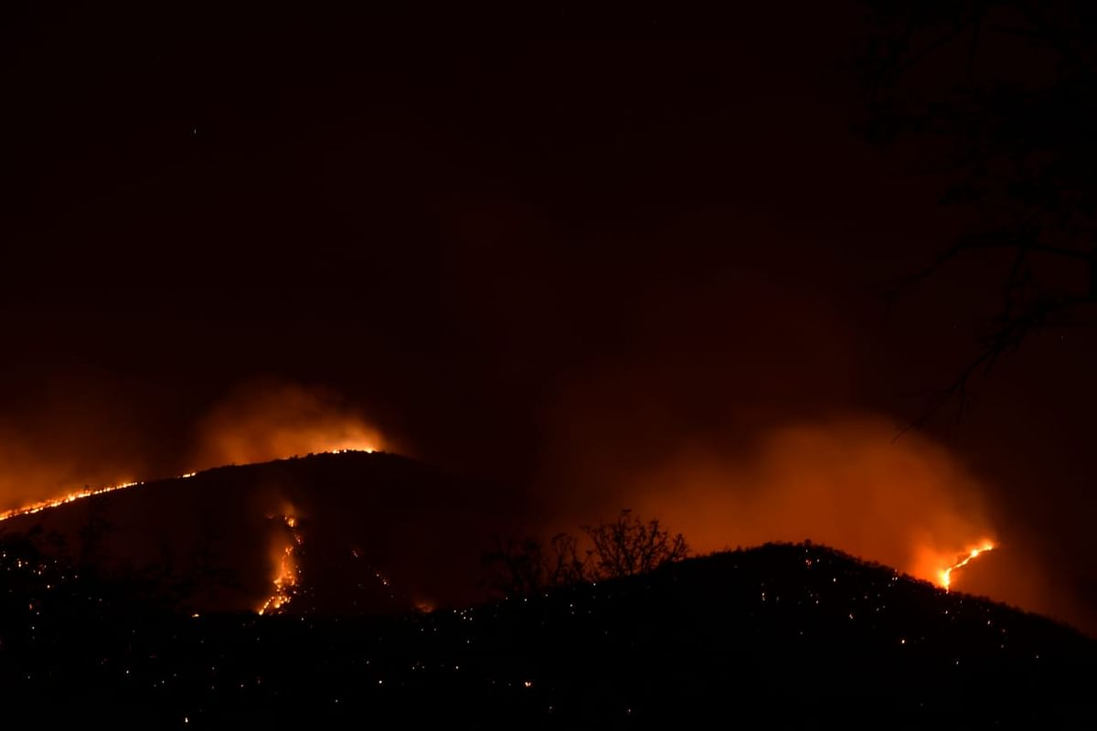 Night time visuals of the fire at Bandiur Tiger Reserve