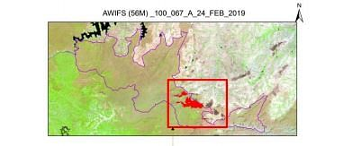Burnt area in Bandipur as of 24 February