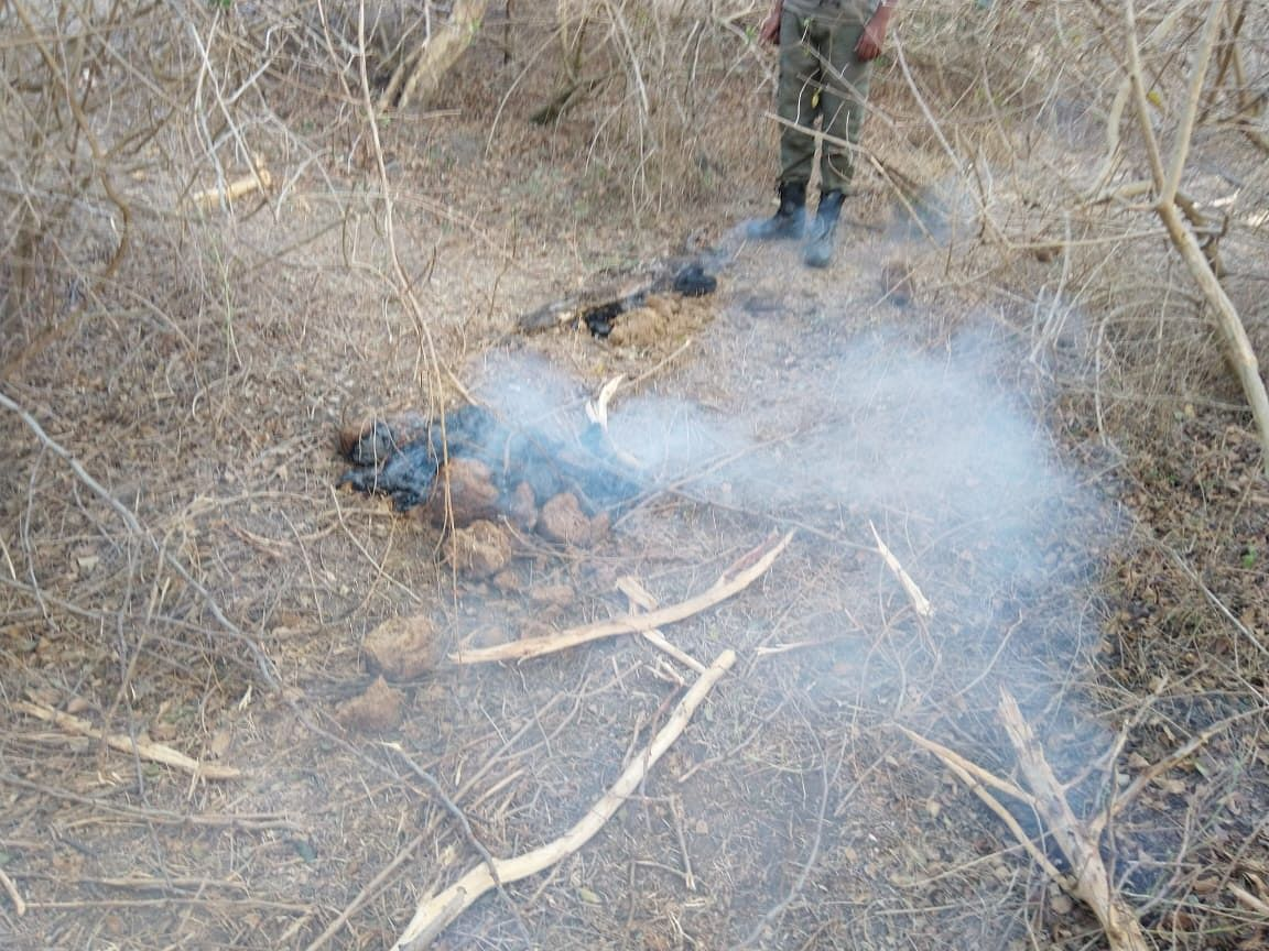 A dung fire discovered by volunteers fire-fighting in Bandipur this week. Dung fires are lit by miscreants who set fire to piles of elephant dung.