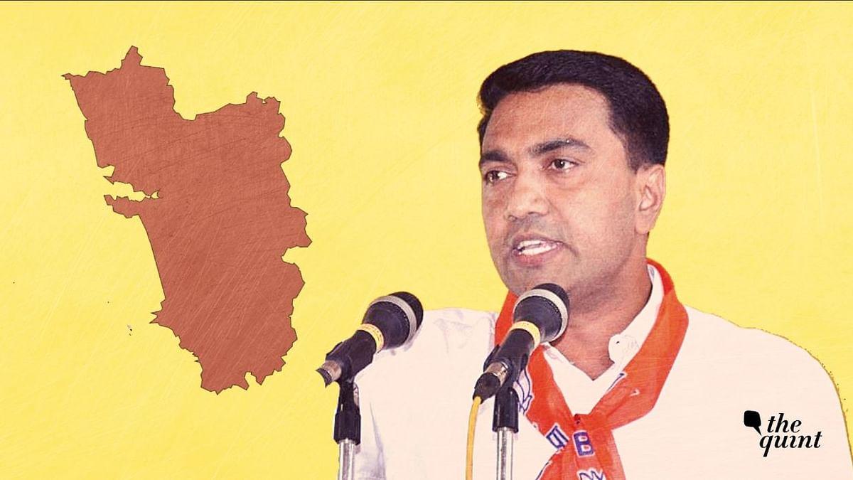 BJP Sweep, AAP Debut: 3 Key Trends from Goa Zilla Parishad Polls