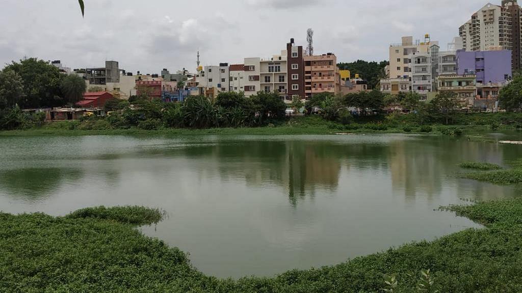 A lakebed in Bengaluru