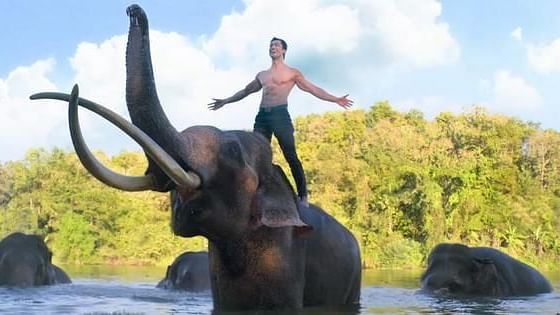 Vidyut Jams with Elephants in Action-Packed 'Junglee' Trailer