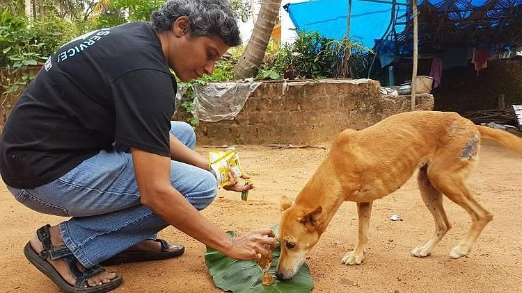 #GoodNews: Coimbatore Woman Awarded by Govt For Service to Animals