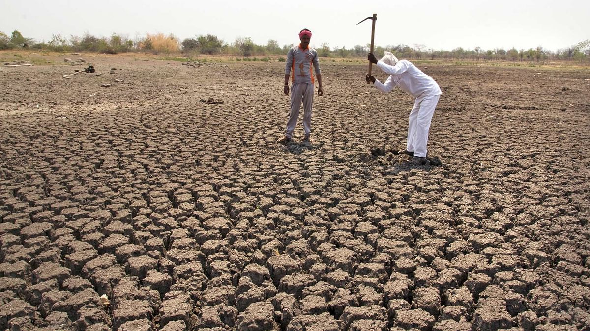 'Nearly 50% of India Facing Drought': IIT-Gandhinagar Scientists