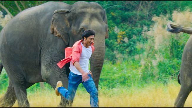Watch: Vidyut Jammwal's Love for Elephants in 'Fakeera Ghar Aaja'