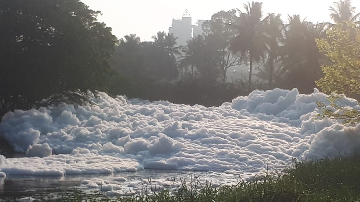 Varthur lake in Bengaluru froths on 5 March.