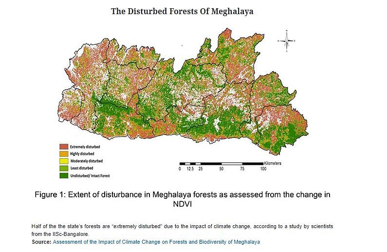 The disturbed forests of Meghalaya.